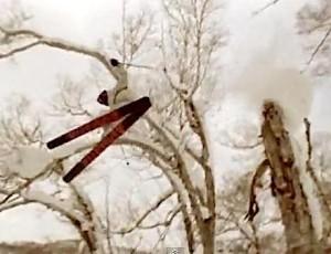 Tanner Hall Freestyle Ski